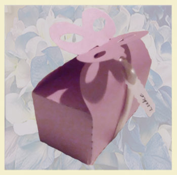 Party boxes with butterfly made in USA